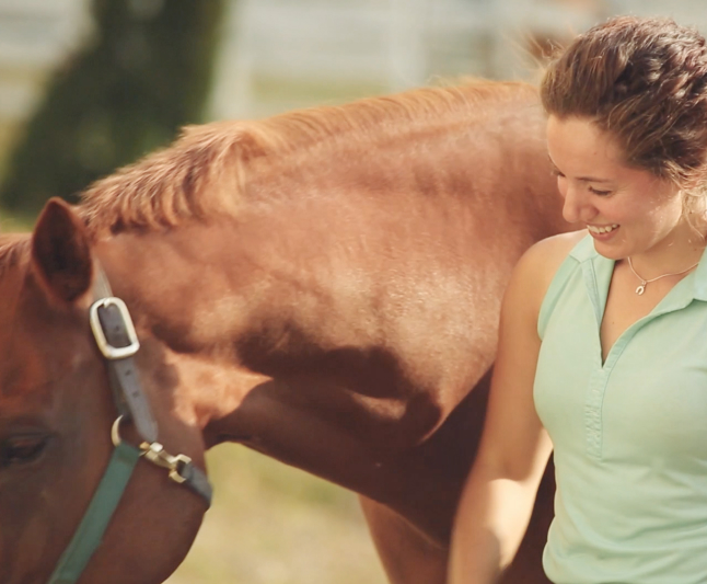 Equine Therapy | Newport Healthcare